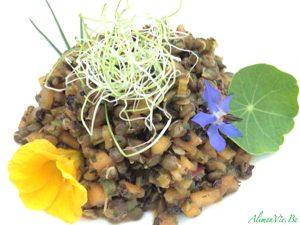 AlimenVie légumineuses salade lentilles vertes pomme céleri curry estragon