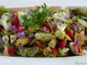 AlimenVie accueil salade saumon cru radis asperges